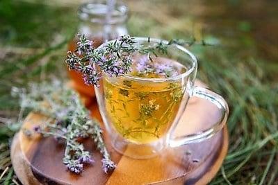 plantas medicinales tos