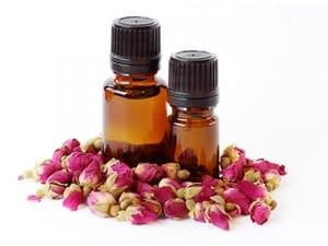 rosa mosqueta aceite ecologica