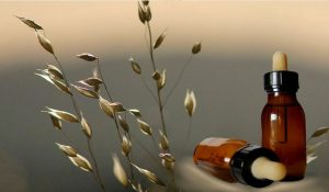 Terapia con flores de Bach, que son y como se toman