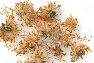 arnica montana flor seca